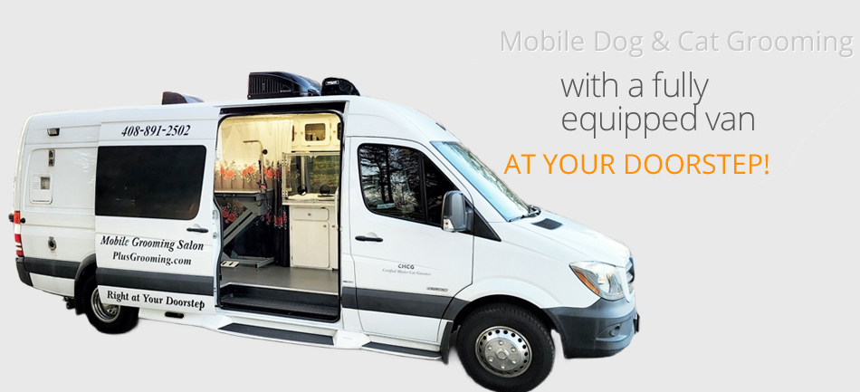 Mobile Dog Grooming San Jose